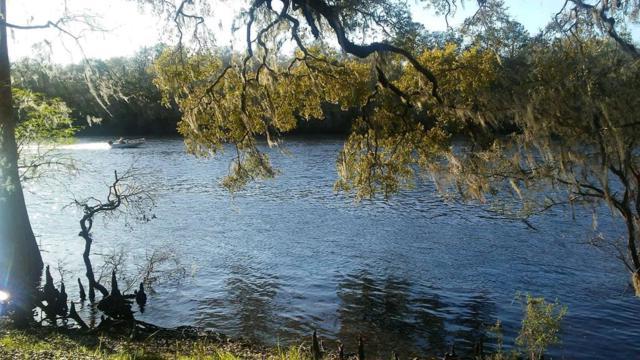 70th Way, Bell, FL 32619 (MLS #776230) :: Pristine Properties