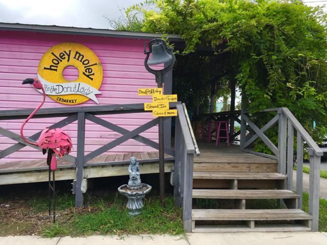 510 2nd, Cedar Key, FL 32625 (MLS #776248) :: Pristine Properties
