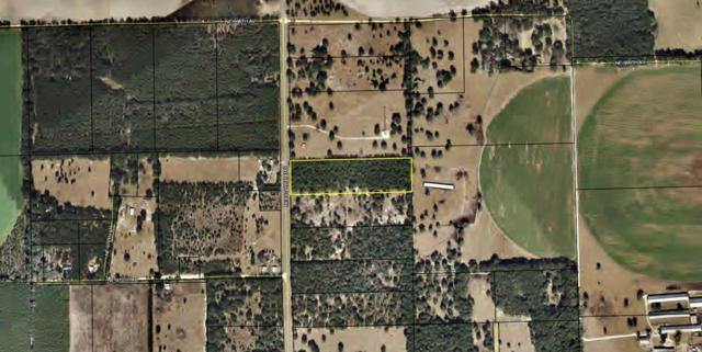 15222 Hwy 349 NE, Old Town, FL 32680 (MLS #776254) :: Pristine Properties