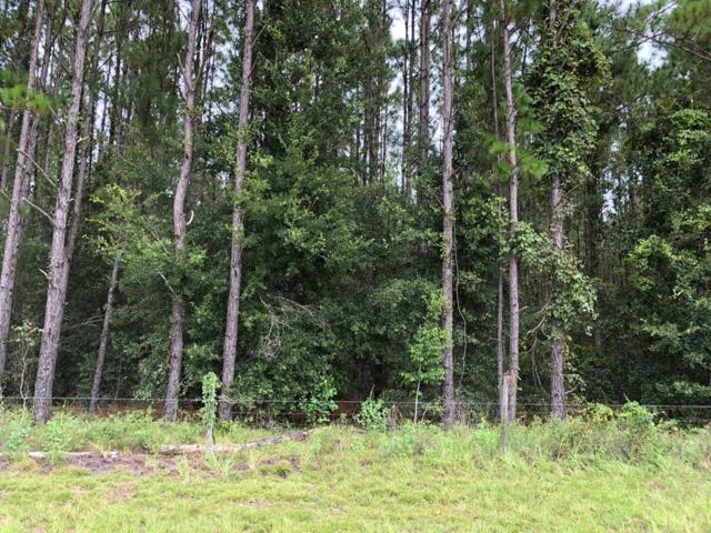63 Lane NW, Chiefland, FL 32626 (MLS #776257) :: Pristine Properties