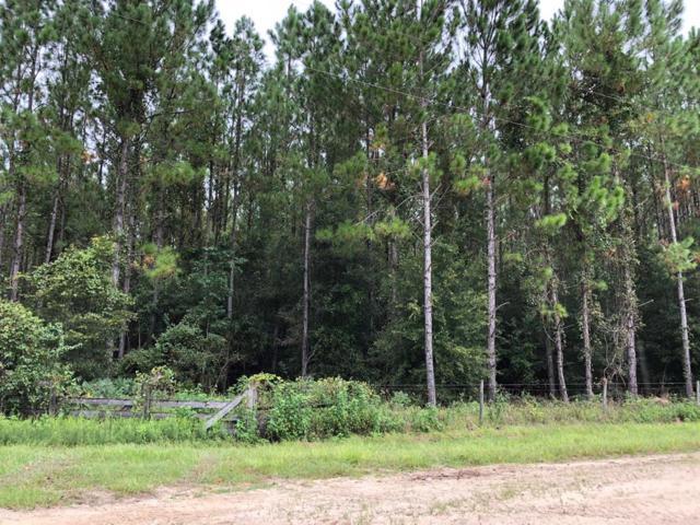 63 Lane NW, Chiefland, FL 32626 (MLS #776258) :: Pristine Properties