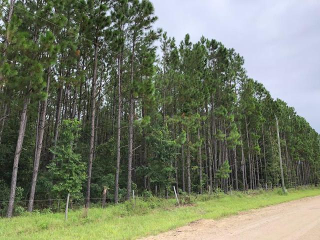 63 Lane NW, Chiefland, FL 32626 (MLS #776260) :: Pristine Properties