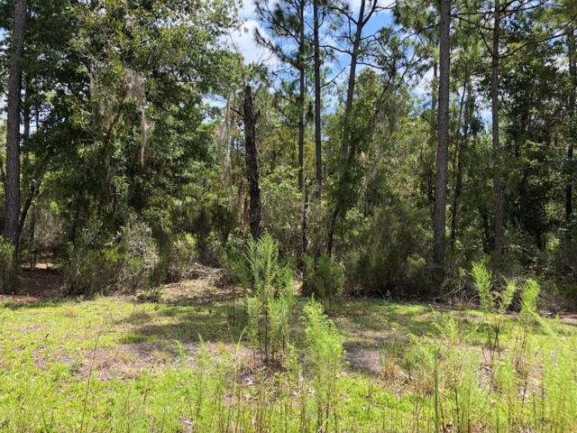 100 Avenue NE, Archer, FL 32618 (MLS #776265) :: Pristine Properties