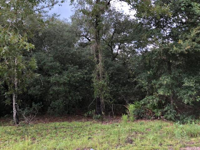 86 Lane NE, Bronson, FL 32621 (MLS #776276) :: Pristine Properties