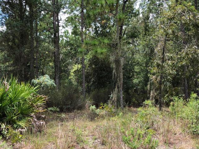66 Lane NE, Bronson, FL 32621 (MLS #776277) :: Pristine Properties