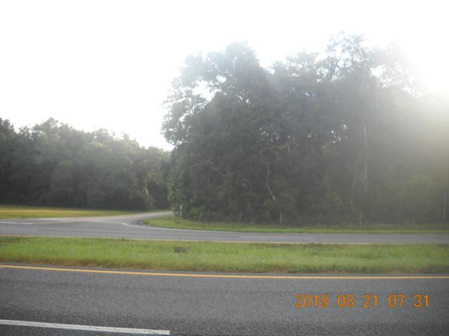 Lot 16 Hwy 19 NW, Chiefland, FL 32626 (MLS #776299) :: Pristine Properties