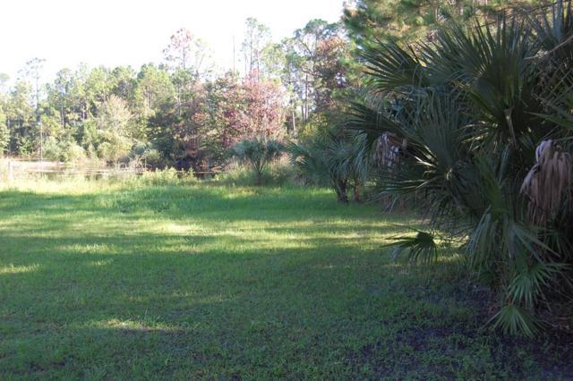705 1st Ave NE, Steinhatchee, FL 32359 (MLS #776553) :: Pristine Properties