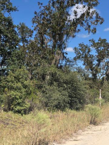 Lot 89 111 Ave NE, Archer, FL 32618 (MLS #776568) :: Pristine Properties