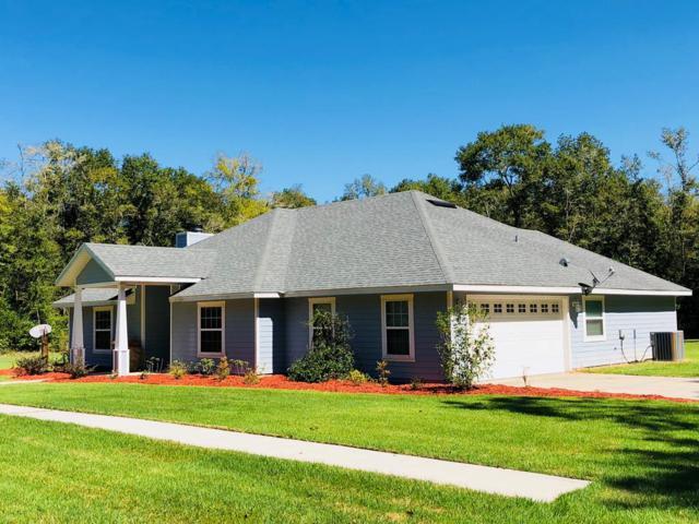 20076 NW 22ND RD, Newberry, FL 32669 (MLS #776624) :: Pristine Properties