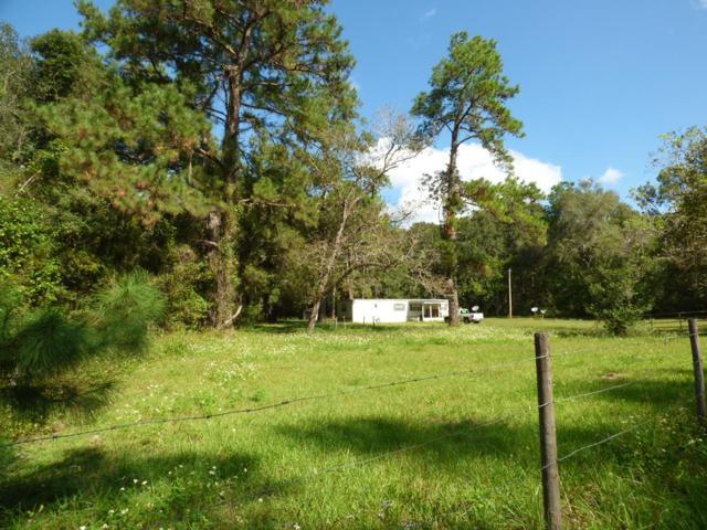 15302 SW Archer Rd, Archer, FL 32618 (MLS #776632) :: Pristine Properties