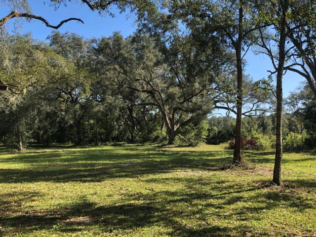 225 NE 497th St, Old Town, FL 32680 (MLS #776641) :: Pristine Properties