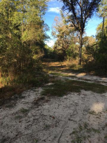 235th Road, Live Oak, FL 32060 (MLS #776873) :: Pristine Properties
