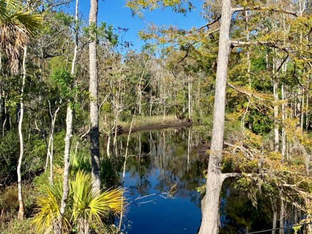 751 Cr 326 SE, Inglis, FL 34449 (MLS #776921) :: Pristine Properties
