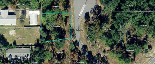 Lot 6 Scallop Bay Dr, Steinhatchee, FL 32359 (MLS #776934) :: Compass Realty of North Florida