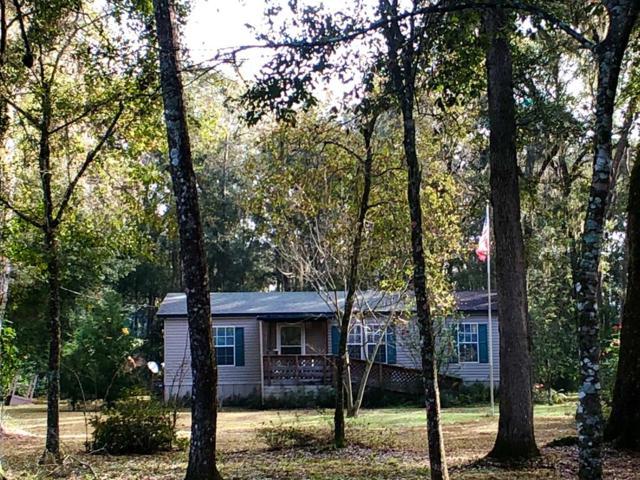 357 NE 434, Old Town, FL 32680 (MLS #776986) :: Pristine Properties