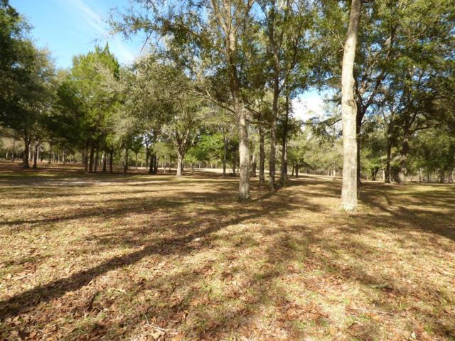000 138 Lane NE, Newberry, FL 32669 (MLS #777102) :: Pristine Properties