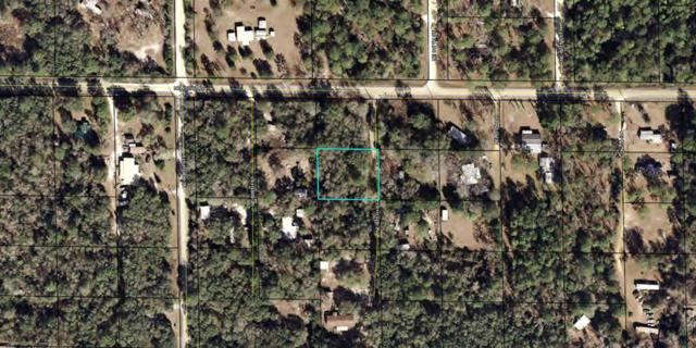 TBD 815th Street NE, Old Town, FL 32680 (MLS #777310) :: Pristine Properties