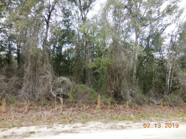 833 St. NE, Old Town, FL 32680 (MLS #777318) :: Pristine Properties