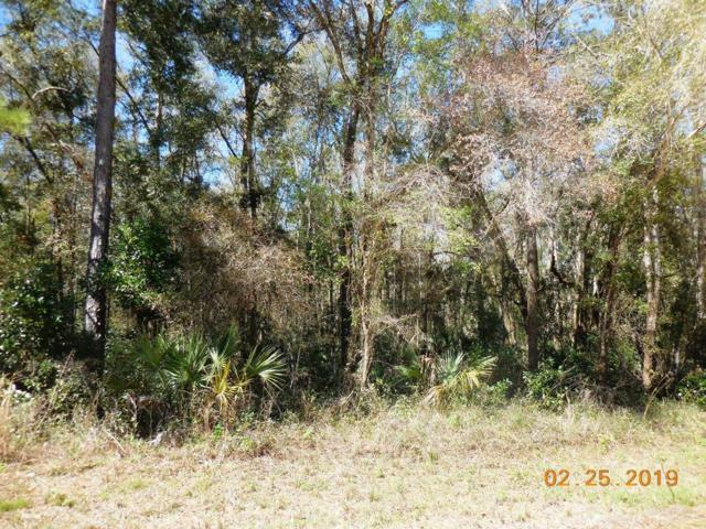 763 St. NE, Old Town, FL 32680 (MLS #777376) :: Compass Realty of North Florida