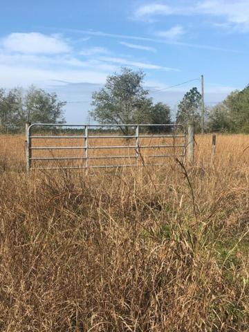 lot 86 Hwy 55A & 467th St SE, Old Town, FL 32680 (MLS #777414) :: Pristine Properties