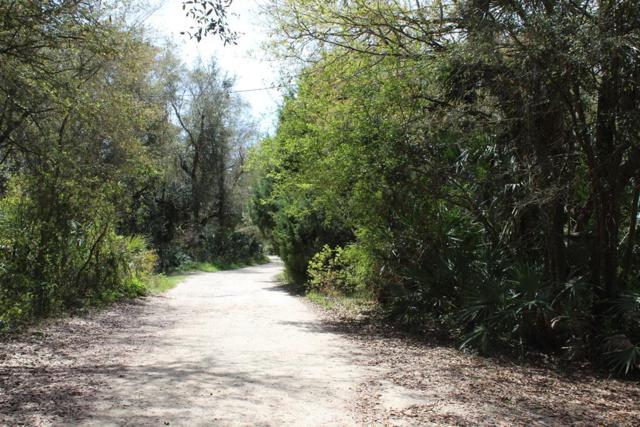 102 CT SW, Cedar Key, FL 32625 (MLS #777482) :: Pristine Properties