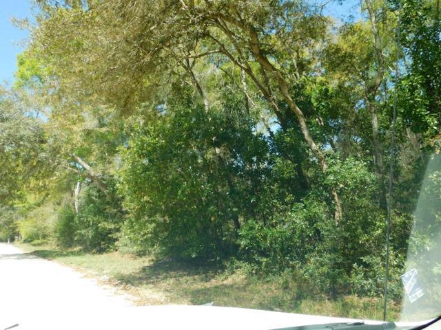 162nd Street NW, Fanning Springs, FL 32693 (MLS #777587) :: Pristine Properties