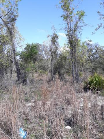 Lot 20 62nd Street NE, Williston, FL 32696 (MLS #777607) :: Pristine Properties
