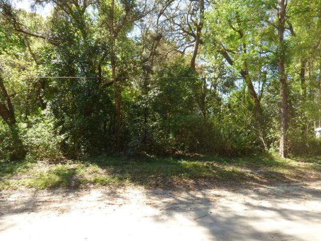 Lot 4 170 Street NW, Trenton, FL 32693 (MLS #777638) :: Pristine Properties