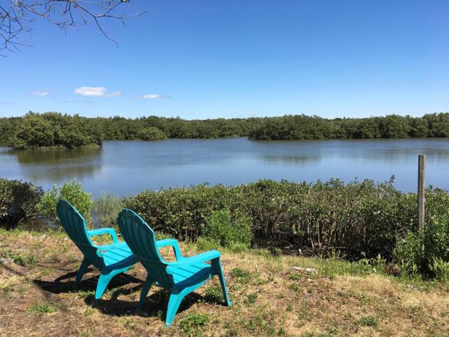 12665 State Road 24, Cedar Key, FL 32625 (MLS #777646) :: Better Homes & Gardens Real Estate Thomas Group