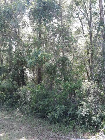 Lot 137 835th Street NE, Old Town, FL 32680 (MLS #777918) :: Compass Realty of North Florida