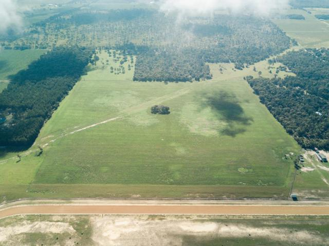 Lot 12 120th Avenue NE, Williston, FL 32696 (MLS #777946) :: Pristine Properties