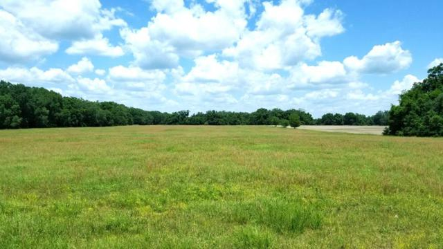 TBD 86th Lane NE, Williston, FL 32696 (MLS #777983) :: Pristine Properties