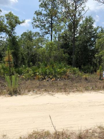 TBDlot14 65th Lane NE, Williston, FL 32696 (MLS #778045) :: Pristine Properties