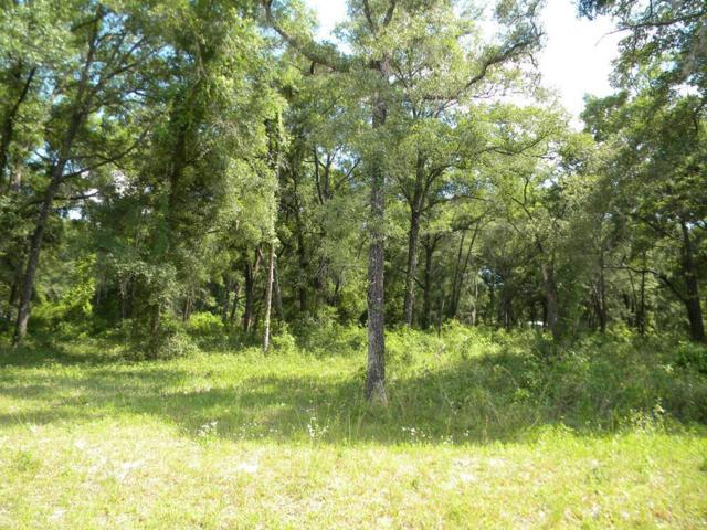 6570 138 PL NW, Chiefland, FL 32626 (MLS #778089) :: Pristine Properties