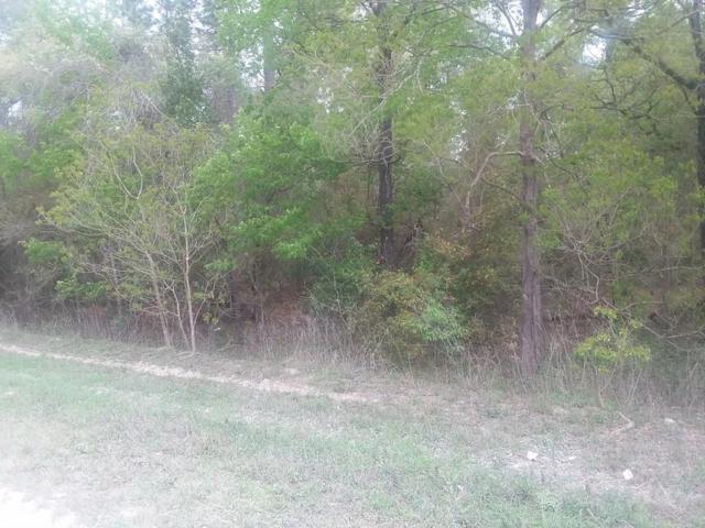 91st Ct NE, Bronson, FL 32091 (MLS #778132) :: Pristine Properties