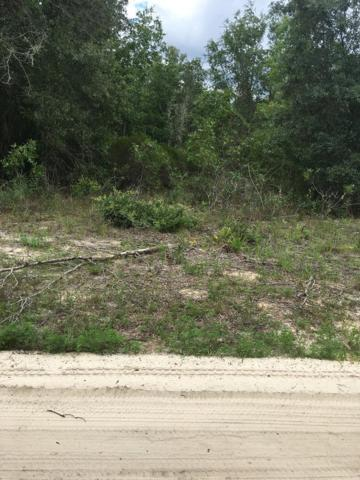 Ne 95 Ave, Bronson, FL 32621 (MLS #778159) :: Pristine Properties