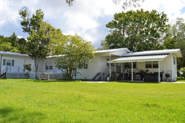 1501 SE Canal Drive, Steinhatchee, FL 32359 (MLS #778163) :: Pristine Properties