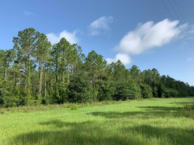 Young Blvd S, Chiefland, FL 32626 (MLS #778201) :: Pristine Properties