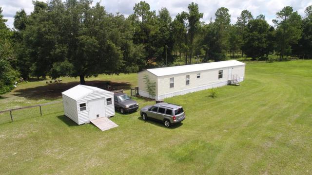 6151 NW 63 Lane, Chiefland, FL 32626 (MLS #778224) :: Pristine Properties
