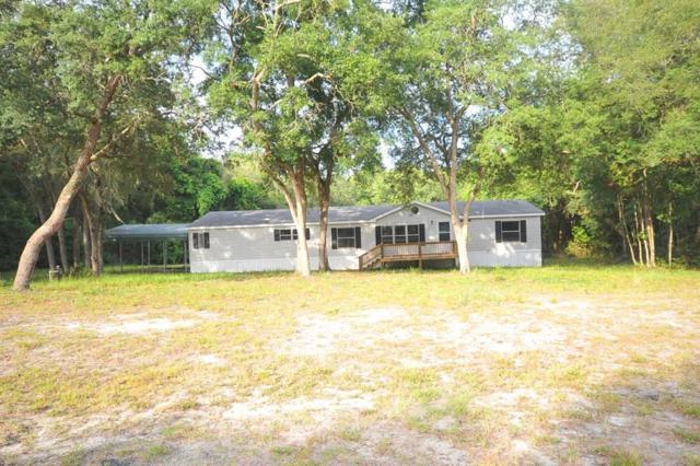 14691 NW 72nd Terr, Trenton, FL 32693 (MLS #778282) :: Pristine Properties