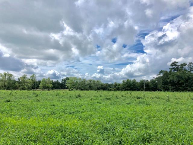 TBD Cr 236 NW, Alachua, FL 32615 (MLS #778325) :: Pristine Properties