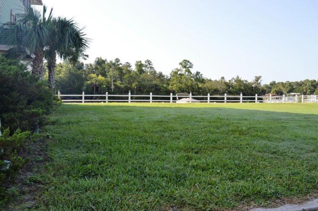 Ryland Circle NE, Steinhatchee, FL 32359 (MLS #778326) :: Pristine Properties