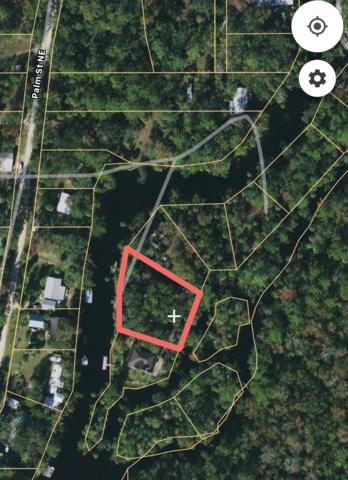 1328 Jr Howell Rd NE, Steinhatchee, FL 32359 (MLS #778332) :: Pristine Properties