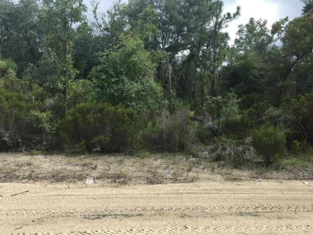NE 85th 85TH, Bronson, FL 32621 (MLS #778388) :: Pristine Properties