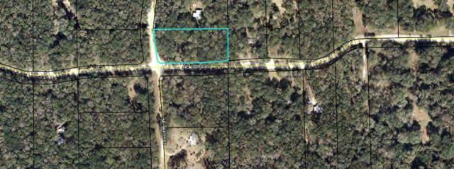 Lot 3 173 Avenue NE, Old Town, FL 32680 (MLS #778417) :: Pristine Properties