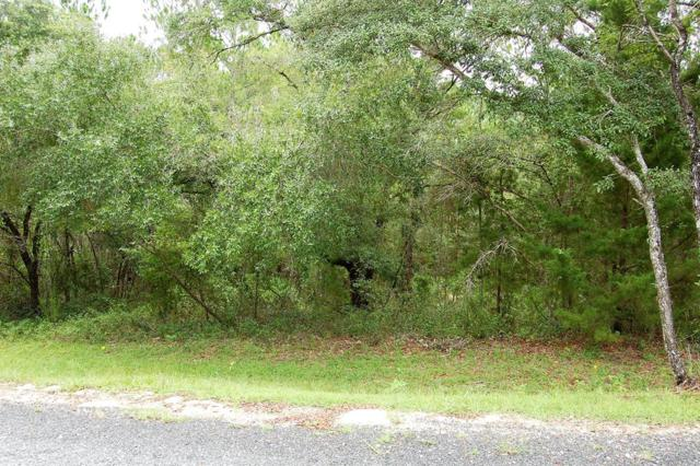 Lot 36 Pine Hill Drive, Steinhatchee, FL 32359 (MLS #778426) :: Hatcher Realty Services Inc.