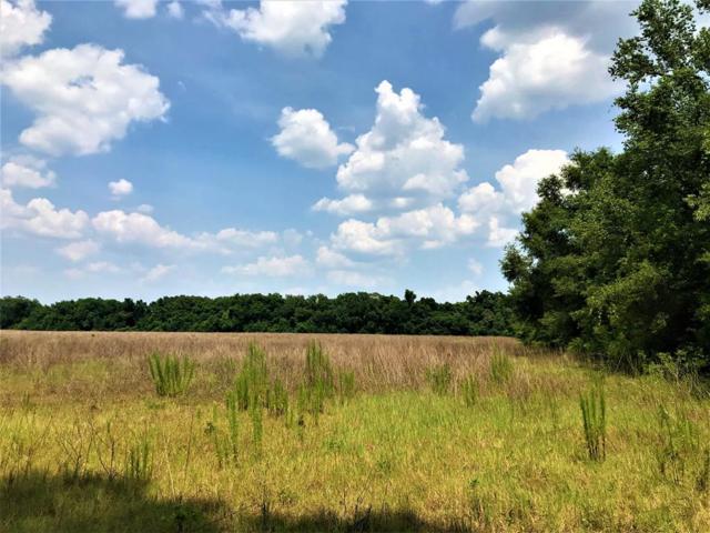 Trenton, FL 32693 :: Pristine Properties