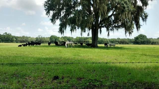 5897 349 Hwy NE, Old Town, FL 32680 (MLS #778478) :: Pristine Properties