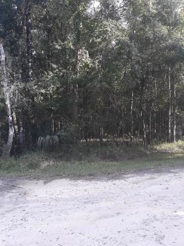 Lot 34 843rd Street SE, Old Town, FL 32680 (MLS #778551) :: Better Homes & Gardens Real Estate Thomas Group