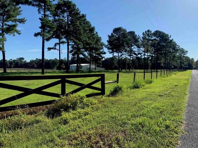 16695 NW 165th, Williston, FL 32696 (MLS #778568) :: Pristine Properties